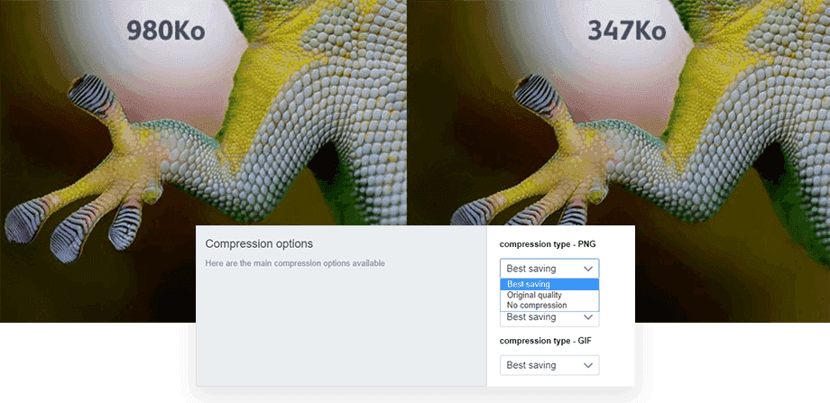 image-compression-quality-shopify